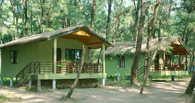 Jungle Lodges Devbagh Beach Resort Tariff